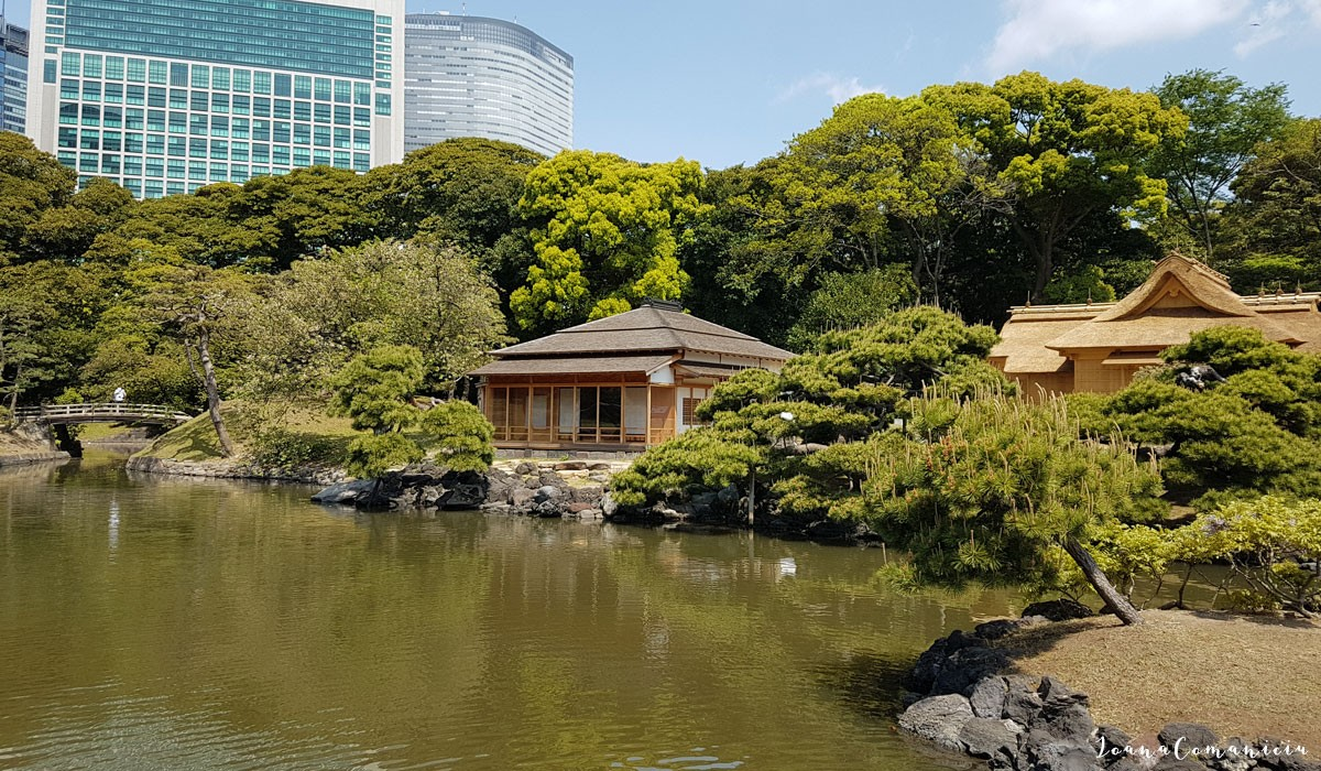 Gradinile Hama Rikyu Tokyo