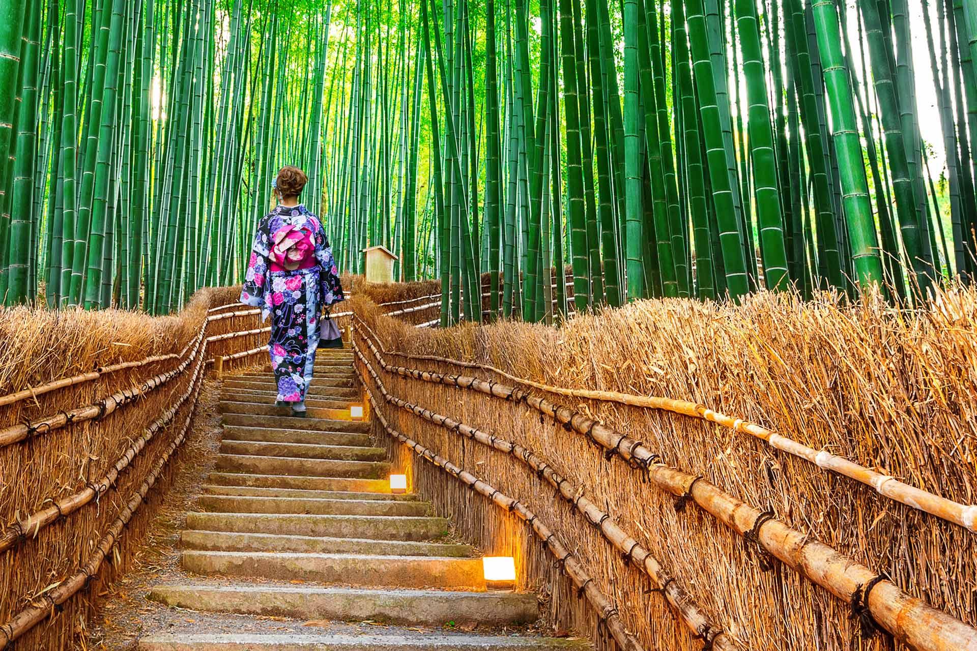 Parcuri uimitoare din Kyoto Japonia traditionala